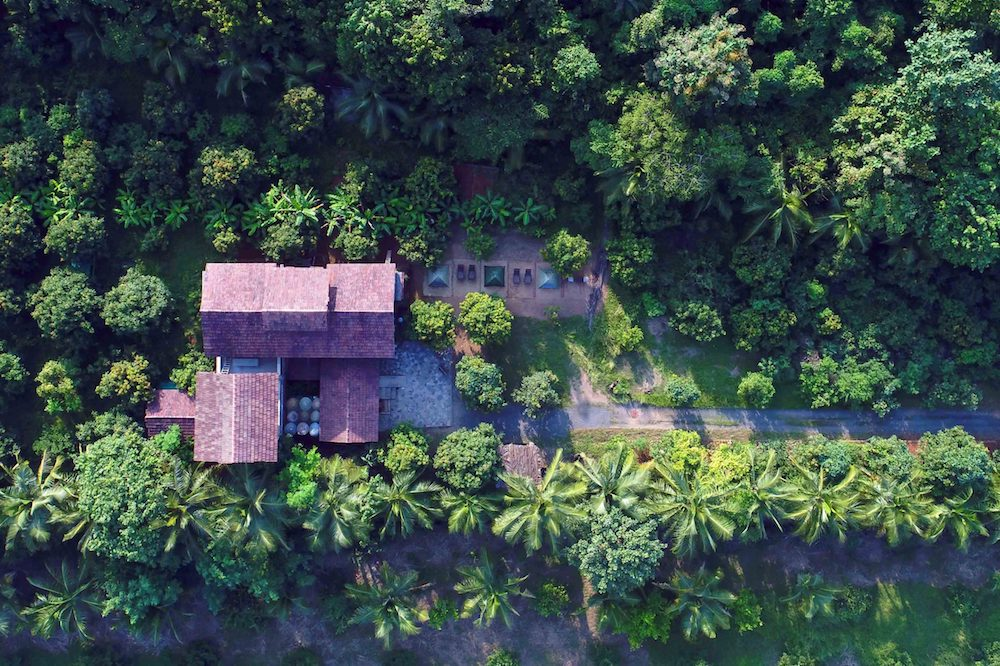 Arwa Farms Dhanua