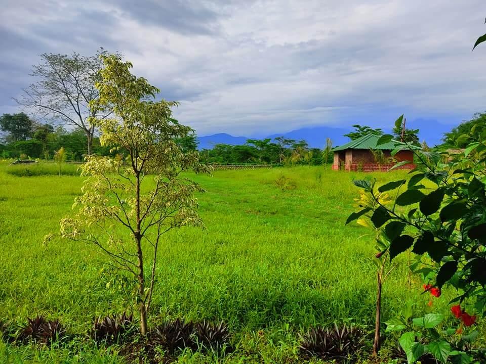 Jia Organic Resort in Arunachal Pradesh